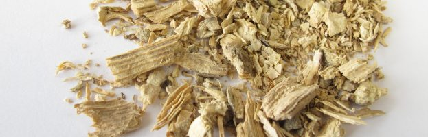 Your Guide to Finding the Right Kava Dosage