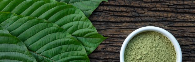 The Benefits of Kratom and Why You Should Take It