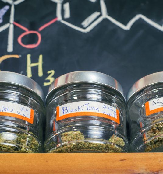 8 Things You Should Know Before Stepping Into a Marijuana Dispensary